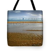 Chesapeake Bay Bridge Tote Bag