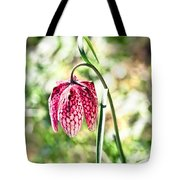 chess-flower in the gardens of Enkoping spring 2012 Tote Bag