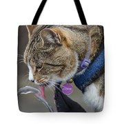 Chester At The Drinking Fountain Tote Bag