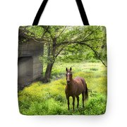 Chestnut Horse In A Sunny Meadow Tote Bag