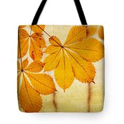 Chestnut Leaves At Autumn Tote Bag