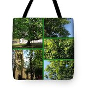 Chestnut Trees At Christchurch Tote Bag