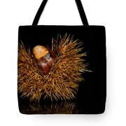 Chestnuts Tote Bag
