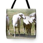 Cheviot Sheep 2 Tote Bag