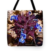 Chia At Dante's View In Death Valley Np-ca  Tote Bag