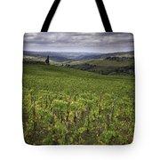 Chianti Region Of Tuscany Tote Bag