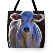 Chiaroscuro Calf Tote Bag