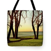 Chicago Lakefront Trail And Lincoln Tote Bag