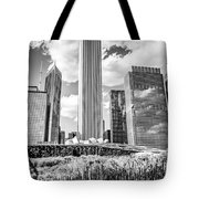 Chicago Skyline Lurie Garden Black And White Picture Tote Bag