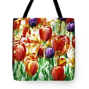 Chicago Tulips Tote Bag