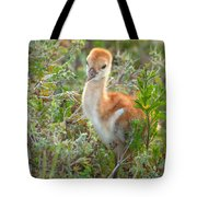 Chick 107 Tote Bag
