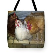Chick Trio  Tote Bag