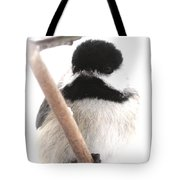 Chickadee-img-2147-001 Tote Bag