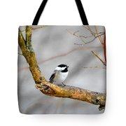Chickadee In Rain Tote Bag