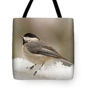 Chickadee In The Snow Tote Bag