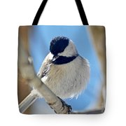 Chickadee On A Bright Day  Tote Bag