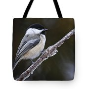 Chickadee Pictures 228 Tote Bag