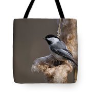 Chickadee Pictures 261 Tote Bag