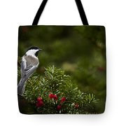 Chickadee Pictures 373 Tote Bag