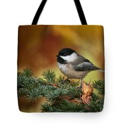 Chickadee Pictures 375 Tote Bag