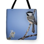 Chickadee Pictures 409 Tote Bag