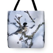 Chickadee Pictures 507 Tote Bag