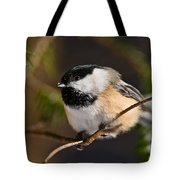 Chickadee Pictures 561 Tote Bag