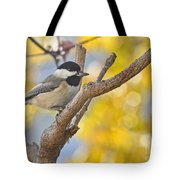 Chickadee With His Prize Tote Bag