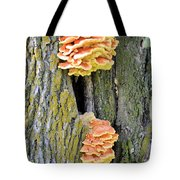 Chicken Of The Woods 2 Tote Bag