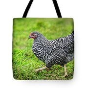 Chicken Walking On Green Pasture Tote Bag