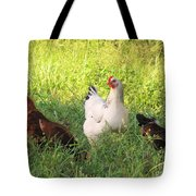 Chickens In Tall Grass Tote Bag