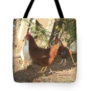 Chickens In The Pin Tote Bag