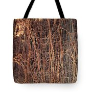 Chickenwire Rusty Tote Bag