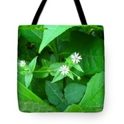 Chickweed Trio Tote Bag