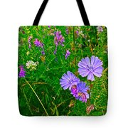 Chicory And Purple Vetch Along Rivier Du Nord Trail In Laurentians-quebec Tote Bag