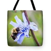 Chicory Bee Tote Bag