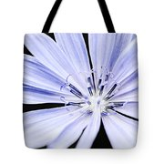Chicory Flower Macro Tote Bag