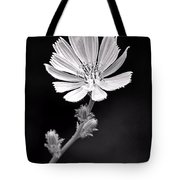 Chicory Wildflower Tote Bag