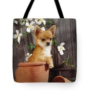 Chihuahua Dog In Flowerpot Tote Bag