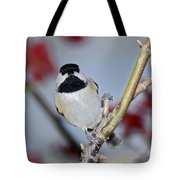 Chikadee On A Limb Tote Bag