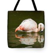 Chilean Flamingo Reflection Tote Bag