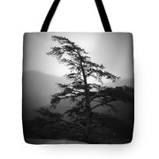 Chimney Rock Lone Tree In Black And White Tote Bag