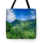 Chimney Tops Mountain In Great Smoky Mountains  Tote Bag