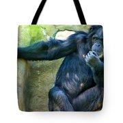 Chimp 1 Tote Bag