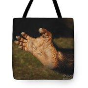Chimpanzee Foot Tote Bag