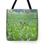 Chin High By The 4th 7395 Tote Bag