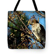 China Berry Hawk Tote Bag