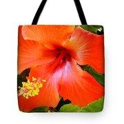 China Camp Hibiscus Tote Bag