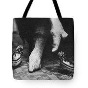 China: Lily Foot, C1900 Tote Bag