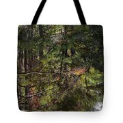 Chincoteague Reflection Tote Bag